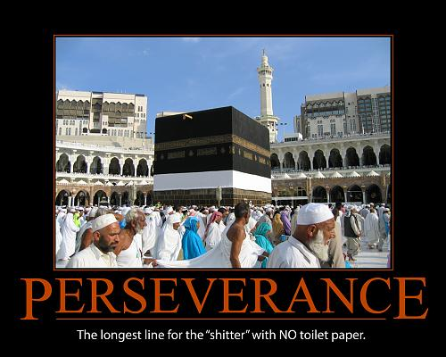 Click image for larger version.  Name:perseverance.jpg Views:0 Size:721.2 KB ID:13791