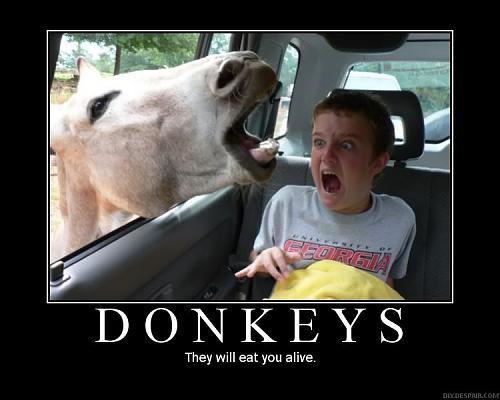 MotivationalPosters-Donkeys.jpg